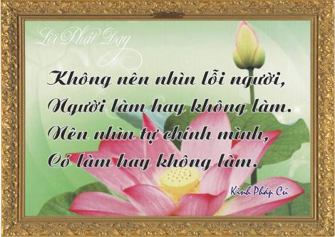 loi-phat-day111