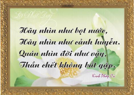 loi-phat-day112