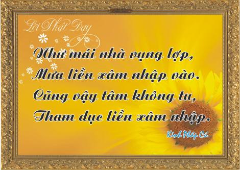 loi-phat-day120