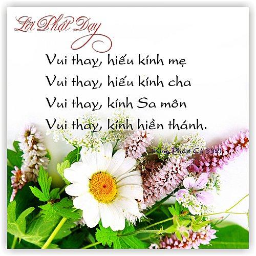loi-phat-day41