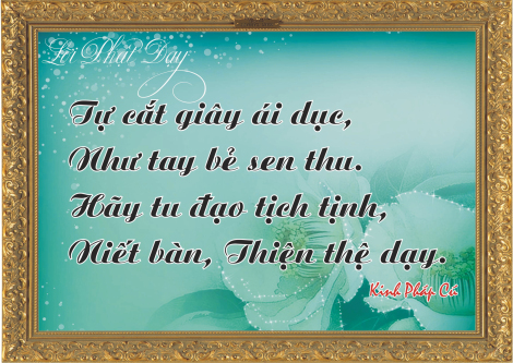 loi-phat-day7