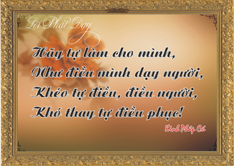 loi-phat-day80