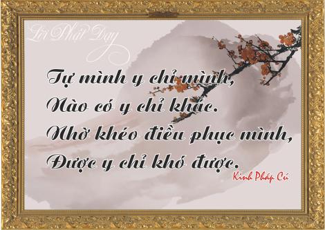 loi-phat-day81