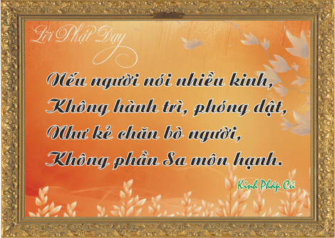 loi-phat-day93