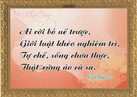 loi-phat-day95
