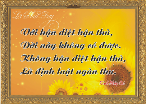 loi-phat-day97