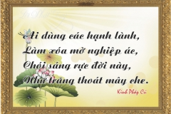loi-phat-day102