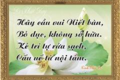loi-phat-day114