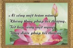 loi-phat-day117