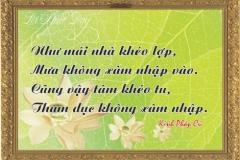 loi-phat-day119