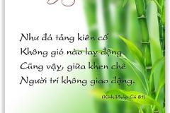 loi-phat-day36