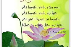 loi-phat-day45