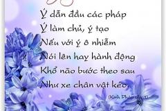 loi-phat-day46