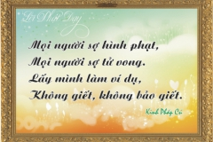 loi-phat-day62