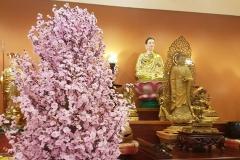 Mung Xuan Dinh Dau34