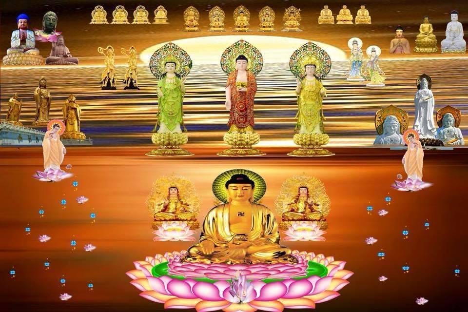 LHĐT – Thông báo thay Thư Mời Tham dự Pháp Hội A Di Đà Phật
