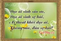loi-phat-day20