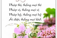 loi-phat-day38