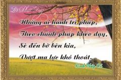 loi-phat-day70