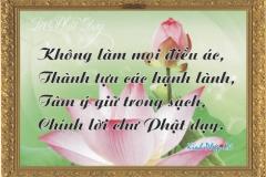 loi-phat-day99